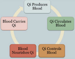 Introduction of Defense-Qi-Nutrient-Blood Syndrome Differentiation