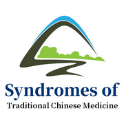 Consulting For Syndromes of Traditional Chinese Medicine.